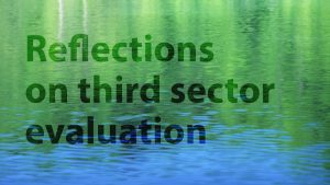 Reflections on third sector evaluation